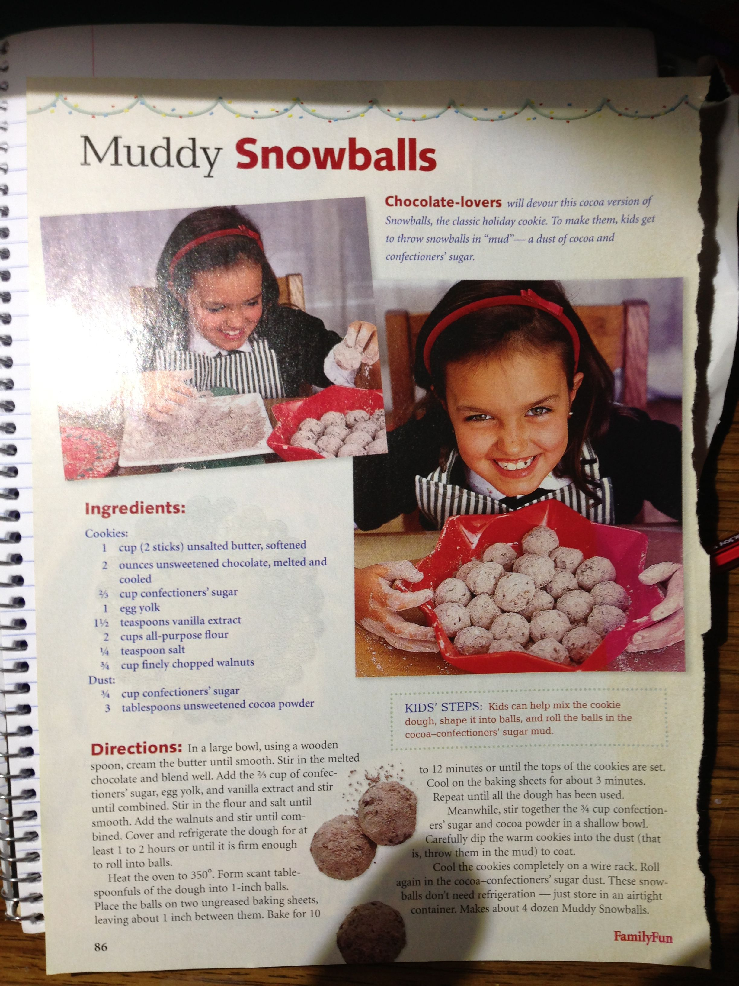 Cocoa snowball cookies