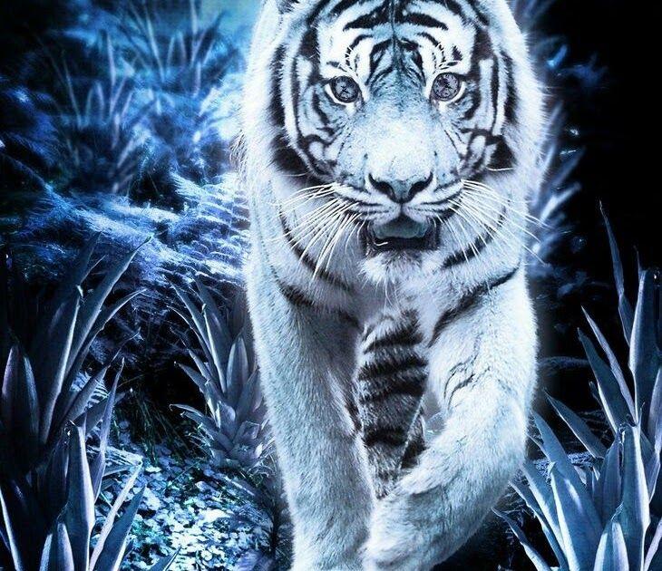 31 Gambar Keren 3d Hewan Pin Oleh Wahyuarjaku Di Pangeran Harimau Putih Harimau Wallpapers Singa 3d Wallpape Menggambar Harimau Wallpaper Keren Gambar Keren