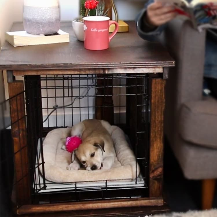 Turn A Plain Old Dog Crate Into A Double Duty End Table Dog