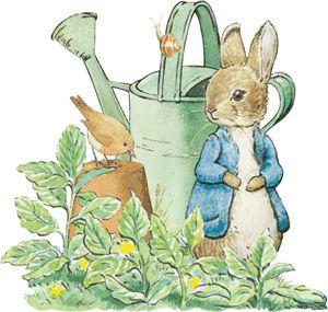 pin by carol ann on artist beatrix potter pinterest peter rabbit rh pinterest com peter rabbit clipart png peter rabbit clip art free
