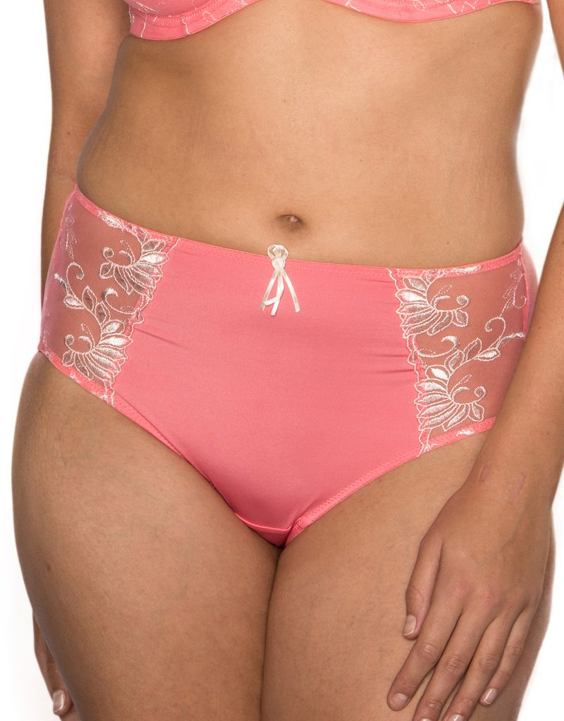 c7eb86ec92 The Pour Moi Imogen Rose Embroidered Brief in salmon is perfect for giving  more coverage with a vintage feel. The rose embroidered mesh side panels  give ...