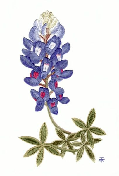 Blue Bonnet Flor Aguja Pintura bordado | puntadas bordado a mano ...