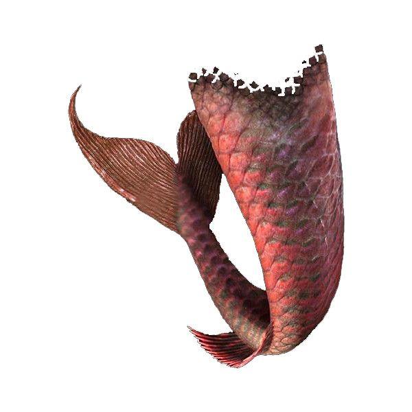 mermaid tail ❤ liked on Polyvore