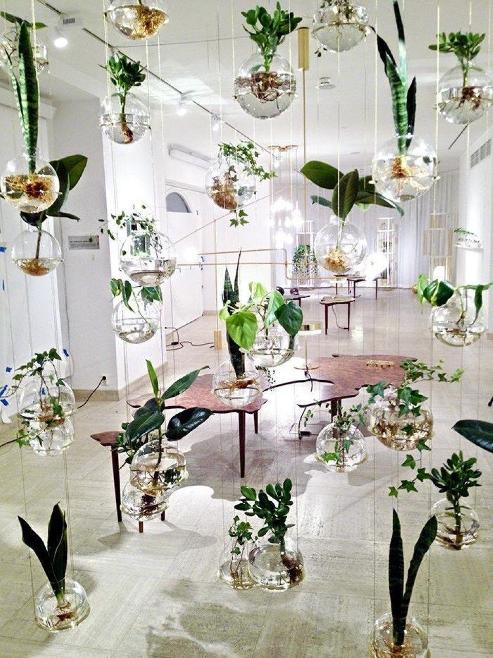 hand blown glass terrarium unique home interior decorating idea