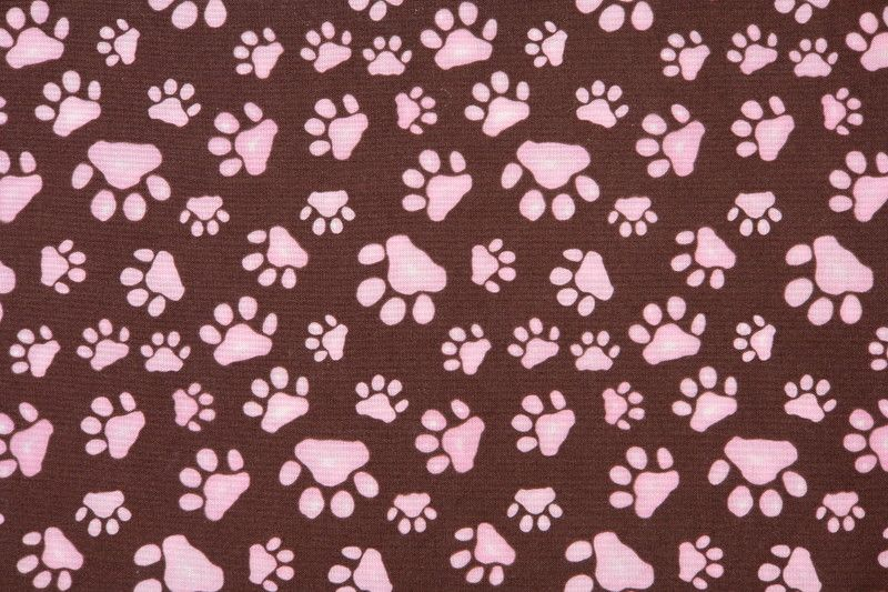 This is the fabulous puppy love paw print Wallpaper, Background ...