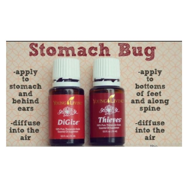 Both DiGize and Thieves come in the starter kit. They are the oils you need for those unexpected stomach bugs.
