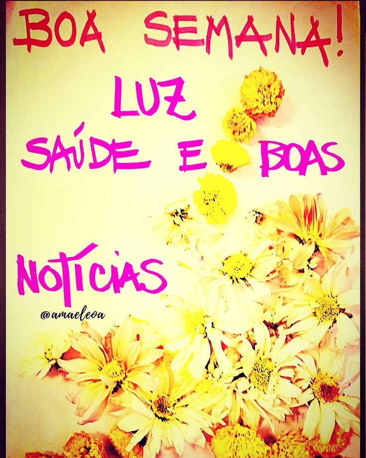 Bom Diaaa Linda E Prospera Semana Com Flores Do Campo Curte