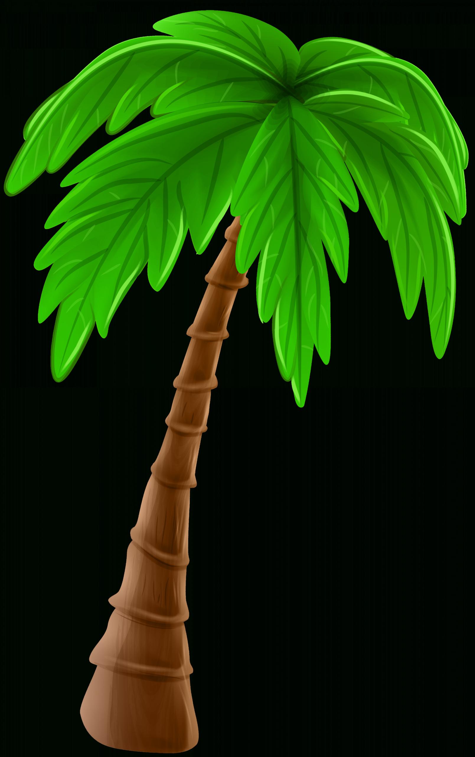 12 Cartoon Palm Tree Png Pohon Kelapa Animasi