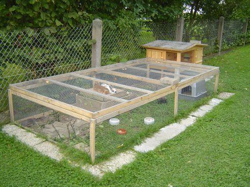 Bilder Eurer Kaninchenstalle Und Aussengehege Kaninchen Forum