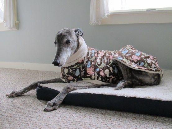 tutorial diy pattern for lined pyjamas | Sighthounds My Fav ...
