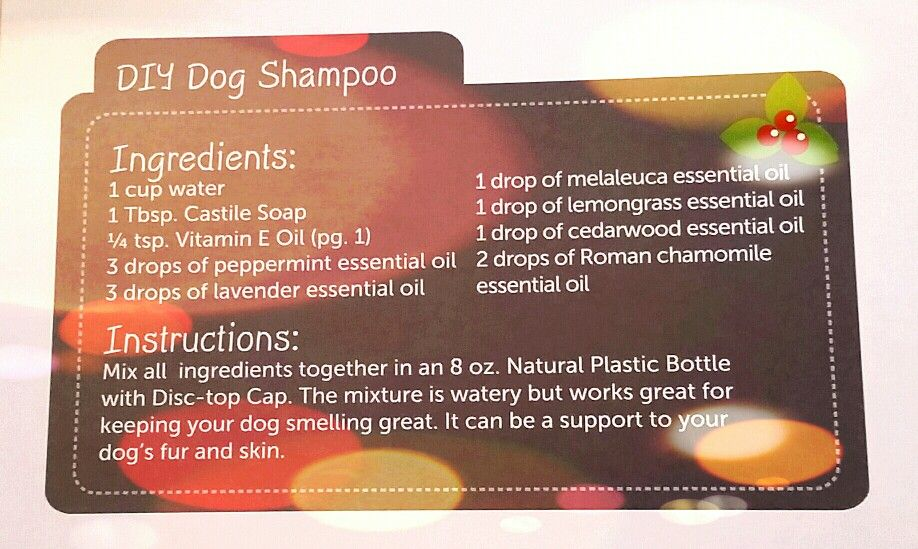 Diy Dog Shampoo Doterra Dog Shampoo Diy Dog Shampoo Dog Shampoo Recipe