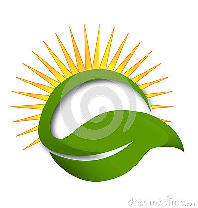 green leaf sun rays vector logo pharmacy ideas pinterest rh pinterest com Rustic Background Rustic Floral Vector