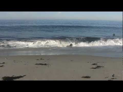 three hours of relaxing ocean wave sounds | Final Assignment
