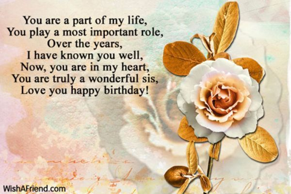 Funny Happy Birthday Wishes Sms For Sister 600x399 Pixels