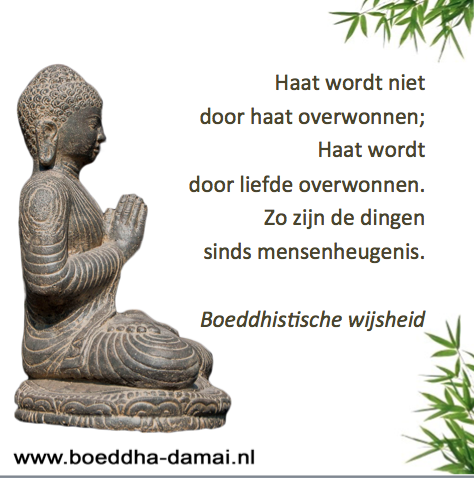 New Boeddha Spreuken | Frasi Sulla Vita &WL57