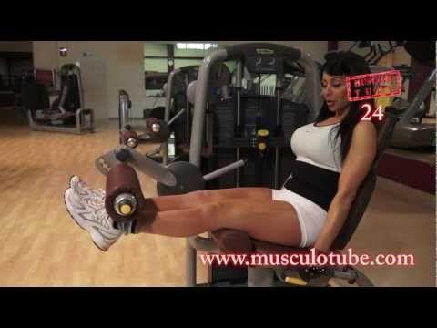 Explicación De La Máquina De Fitness De Leg Extension Extensión De Rodillas Para Trabajar Los Cuádriceps Leg Extensions Ejercicio Legs