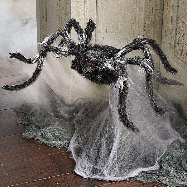 Animated Haunted Jumping Spider Halloween Pinterest Halloween