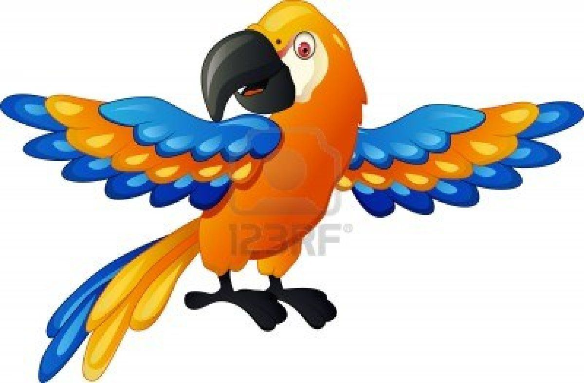 Funny parrot cartoon Stock Photo - 14508800 | Birds of a feather ...