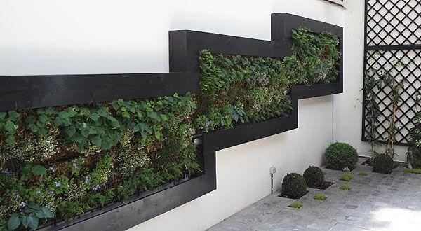 Een lelijke muur als buur creëer je eigen verticale tuin tien