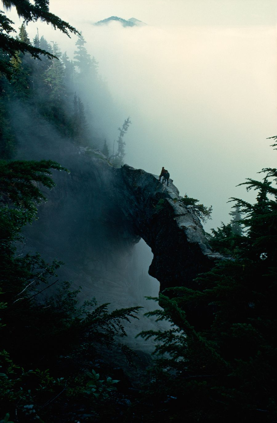 The 100 Best Rarely Seen National Geographic Photos Natural Bridge Landscape Nature