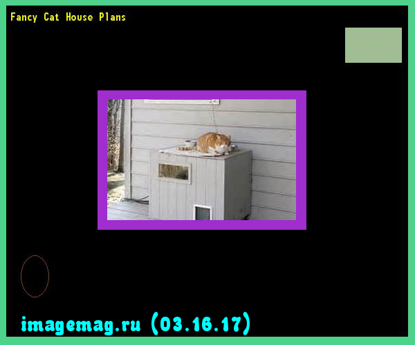 Fancy Cat House Plans 153136 - The Best Image Search