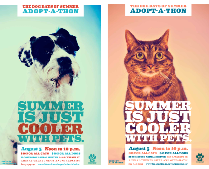 Summer Pet Adoption Credit Larry Buchanan Animal Shelter