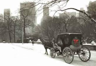 New York Carriage Company Central Park  Hour Full Ride Through Central Park Get Starbucks Before
