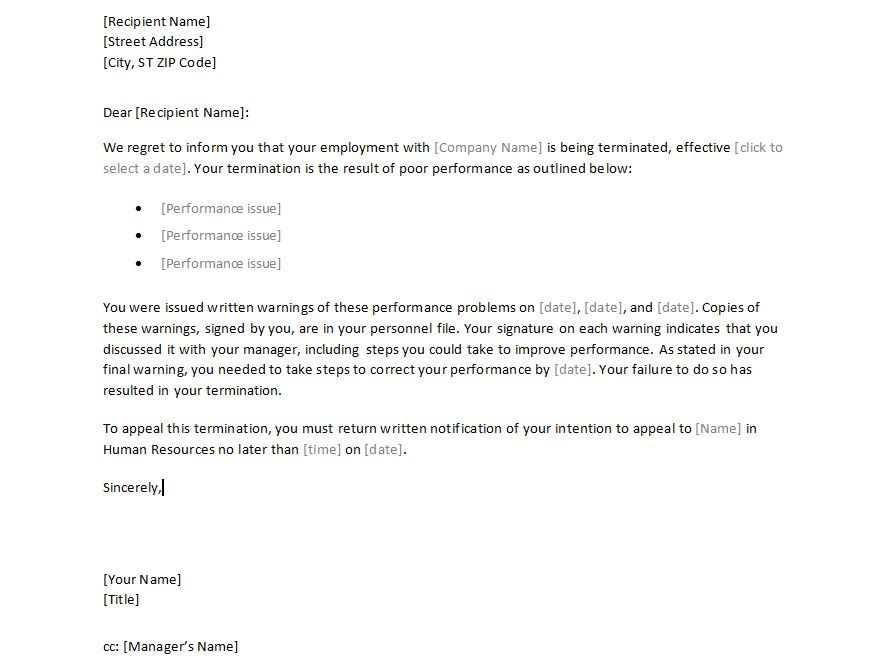 Sample Employee Termination Letter Template - employment - sample performance appraisal form
