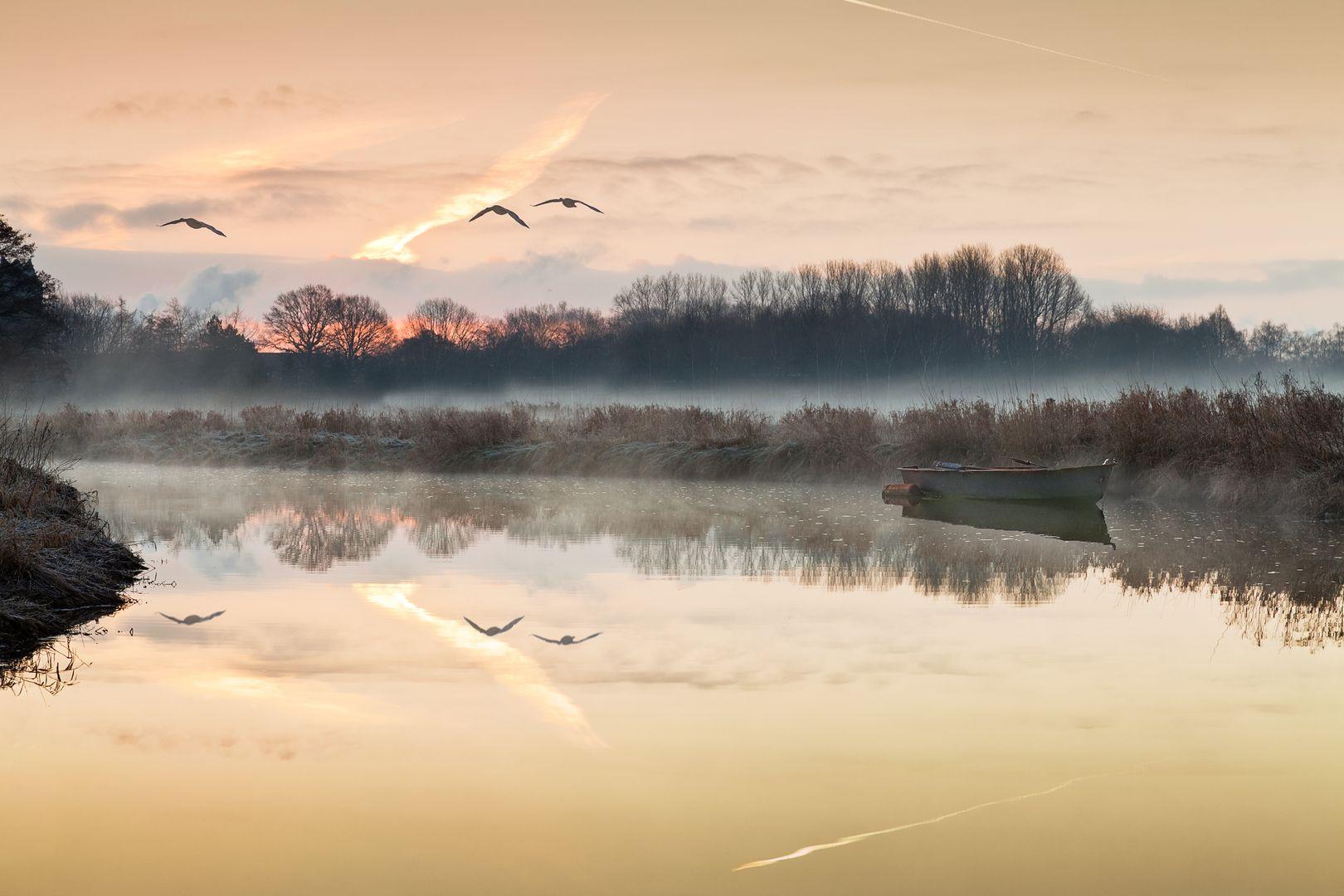 Morgens am Flussufer