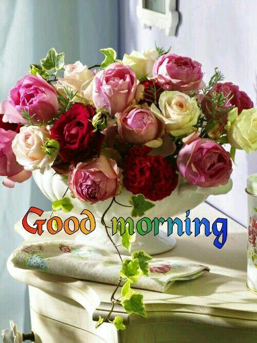 Good morning flower | GOOD MORNING | Pinterest | Morning pictures ...
