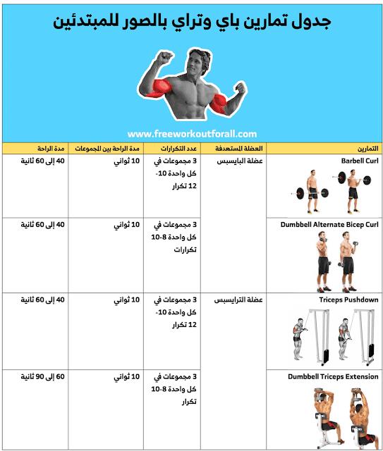 جدول تمارين باي وتراي بالصور Arm Workout Barbell Curl Super Sets