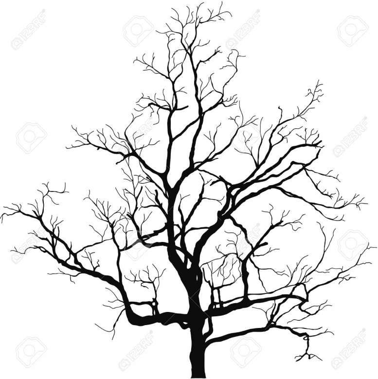 18 Dead Tree Vector Tree Silhouette Silhouette Vector Tree Vector Png