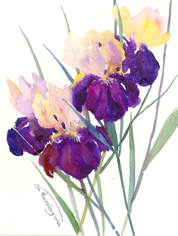 Deep Violet Purple Irises Painting Original Watercolor Painting