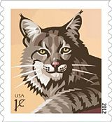 Bobcat 1 Cent Stamp Postage Stamp Art Cat Stamp Usps Stamps