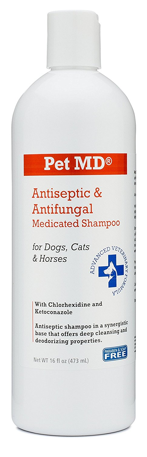 Antifungal Soap For Dogs | Zef Jam