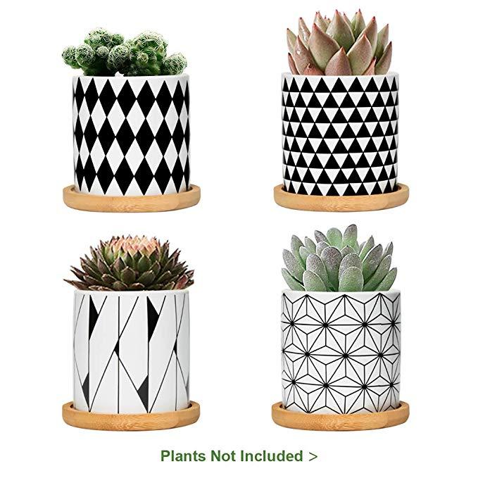 Amazon Com Fairylavie 3 Inch Ceramic Little Pots For Plants Geometric Pattern Succulent Plant Pots Planters With B In 2020 White Plants White Planters Succulent Pots