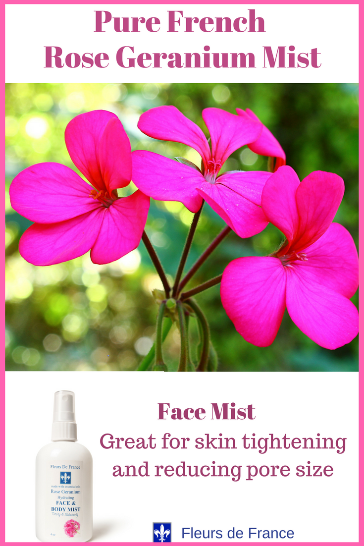 French Rose Geranium Mist Hydrating Firming Mist 4oz Rose Geranium Essential Oil Rose Geranium Oil Coconut Oil Skin Benefits