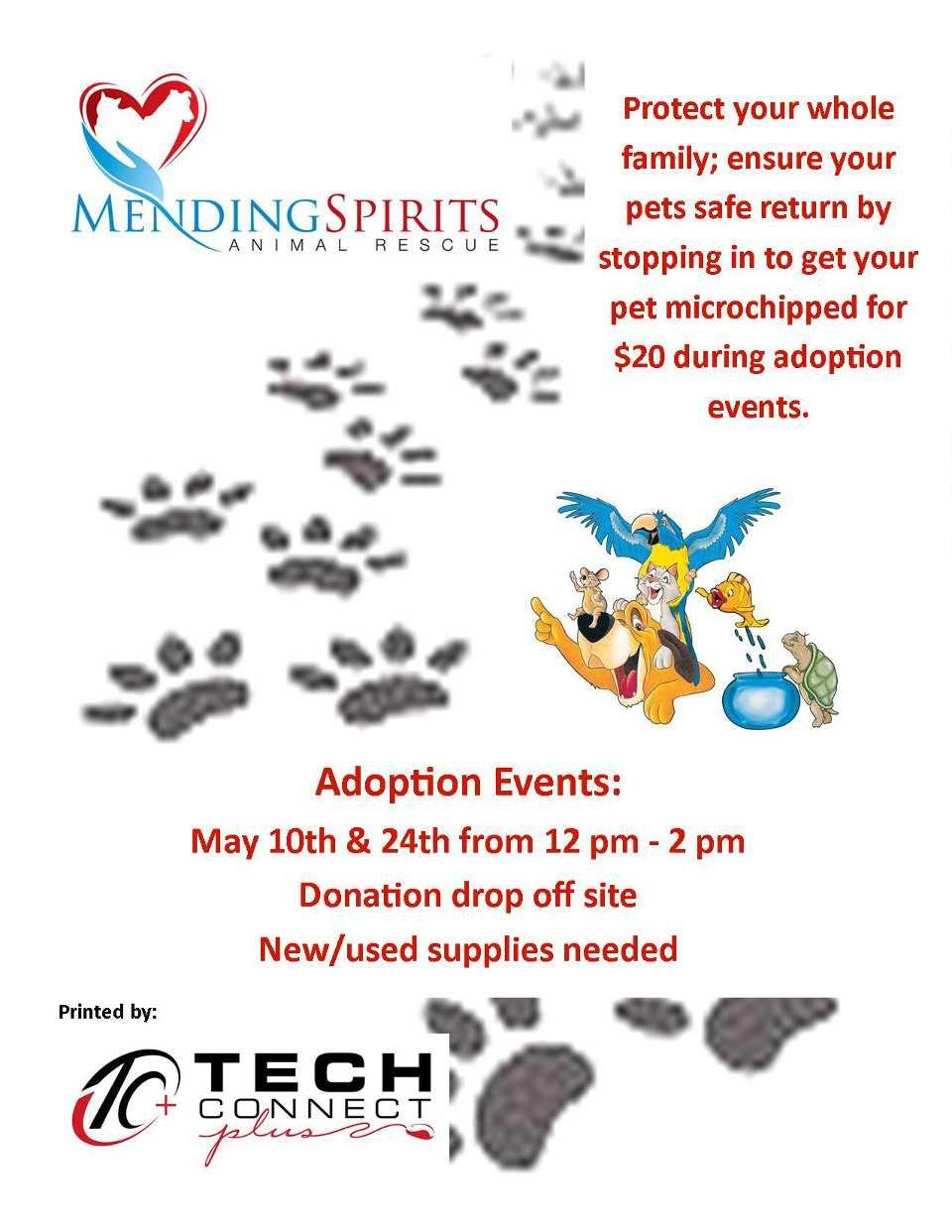 Mending Spirits Animal Rescue May Happenings Spirit Animal Animal Rescue Rescue