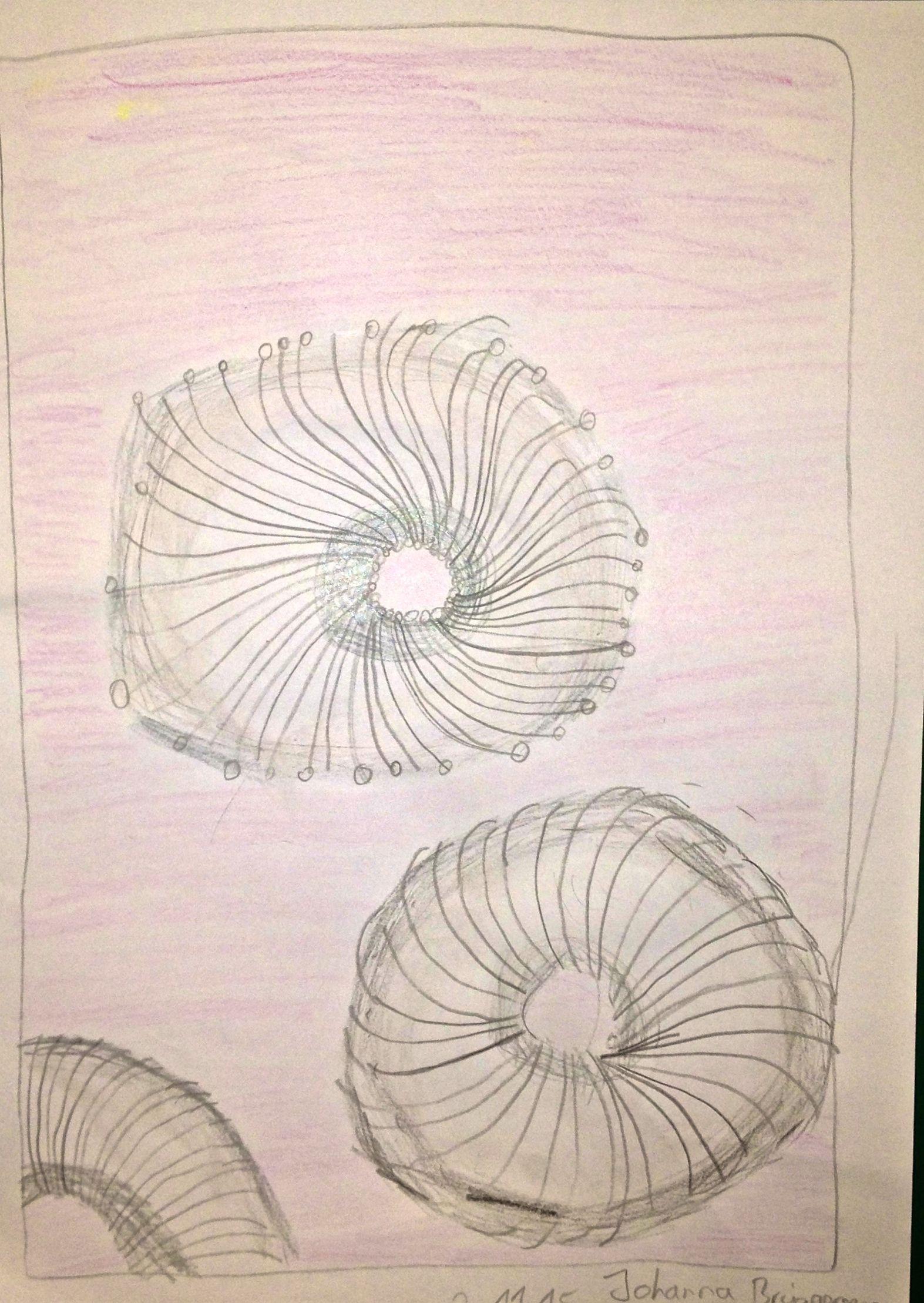 Blumen Gedoodelt Mischtechnik Bleistift Und Fineliner Koloriert