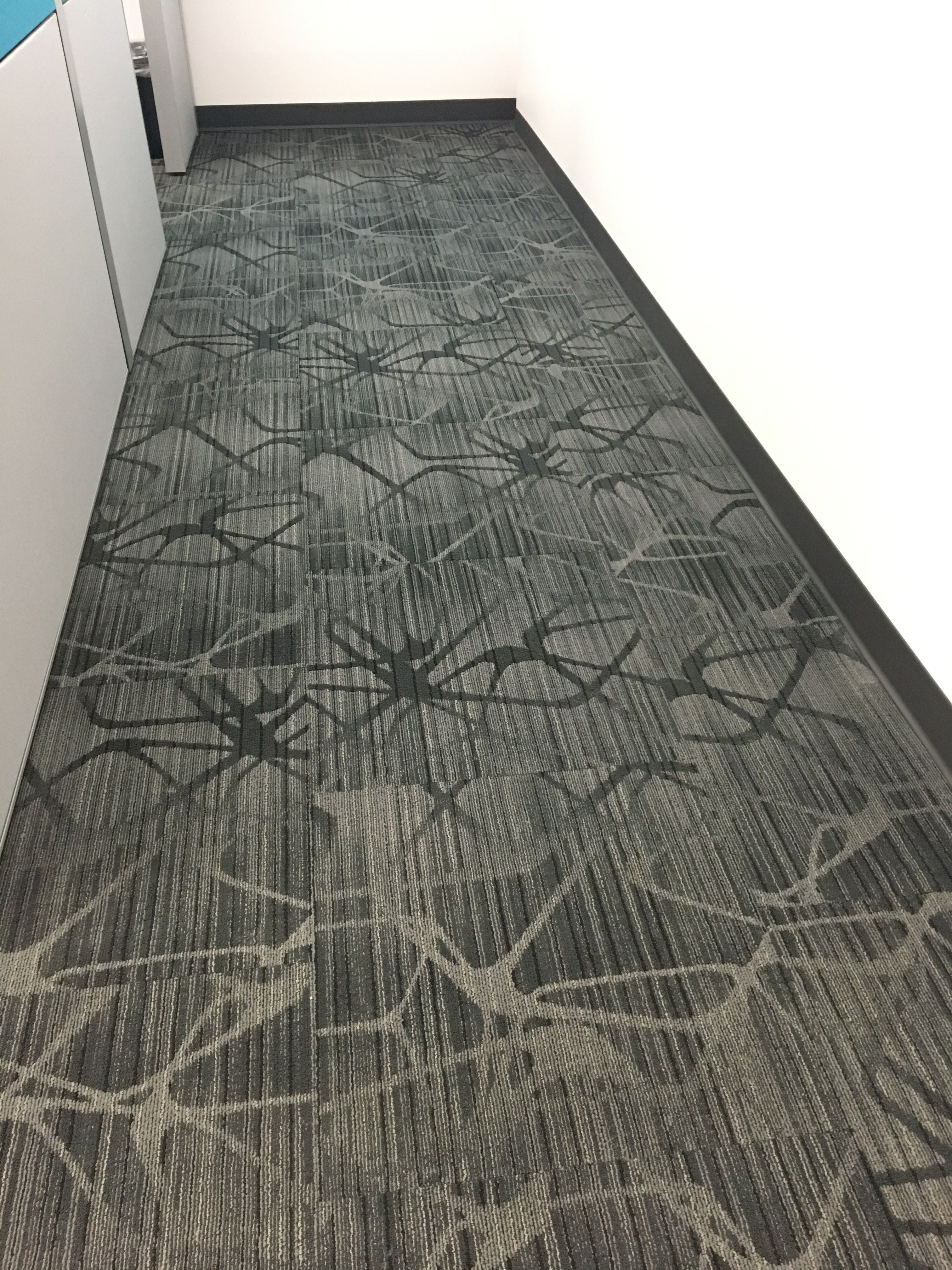 Reflect Installation By Masland Contract Patterned Carpet Commercial Carpet Modular Tile