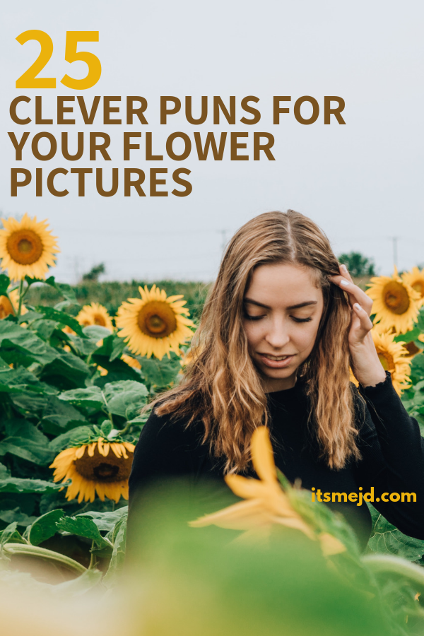 25 Flower Puns That Are Too Clever For Their Own Good Flower Puns Funny Instagram Captions Instagram Captions Clever