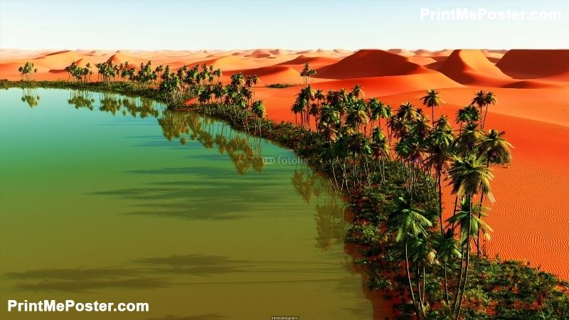Beautiful Natural Background African Oasis Poster Natural