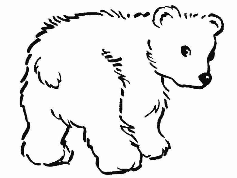Tiere (87) | Bären | Pinterest | Tier, Bilder zum ausmalen und ...