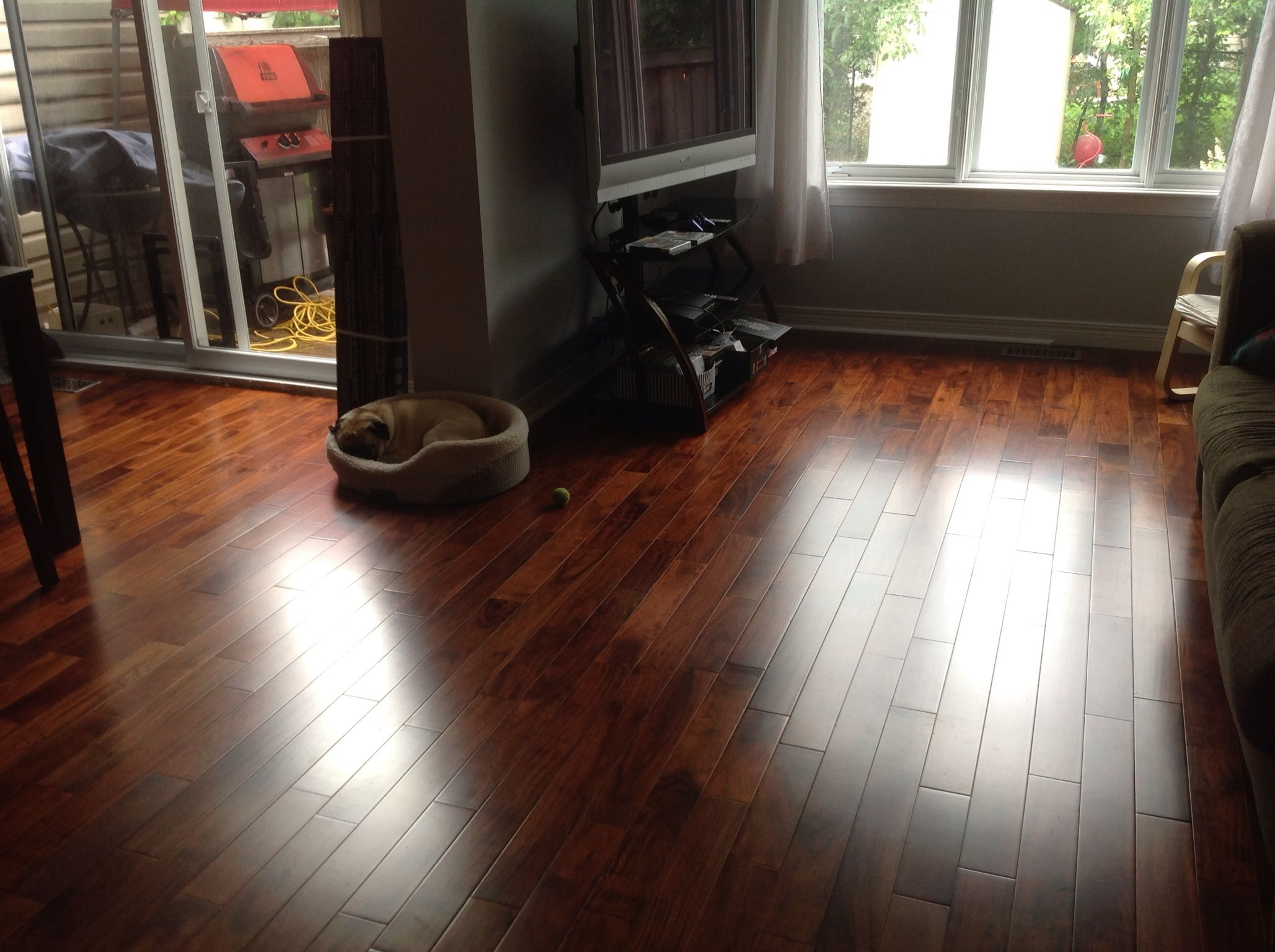 Hardwood floor Engineered Trillium Imperial Walnut from Home Depot