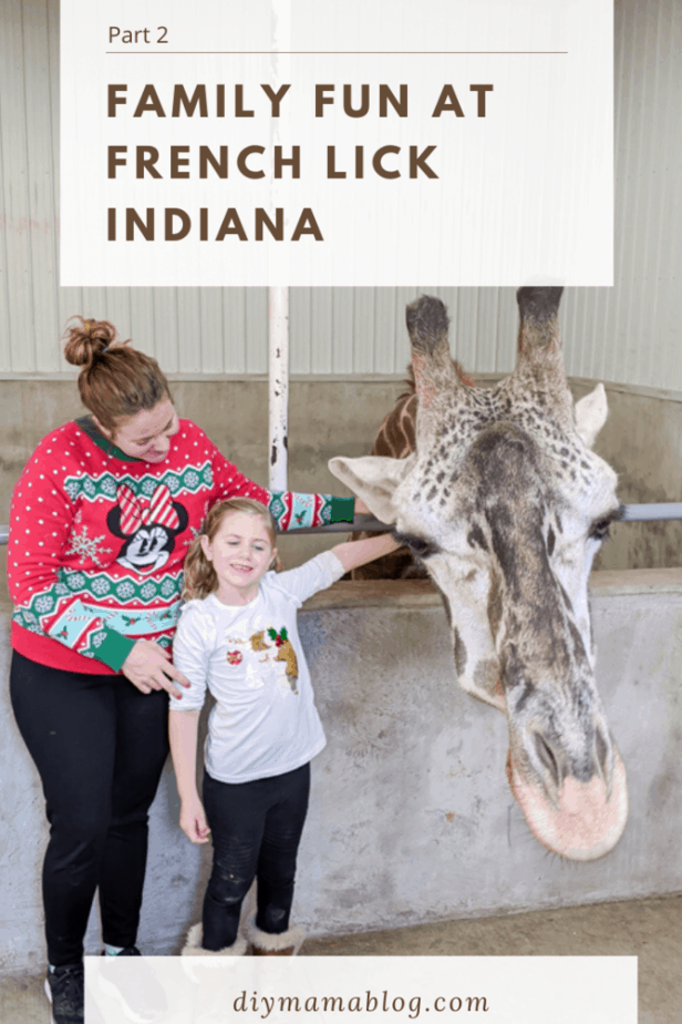 French Lick Christmas 2020 Family Fun in French Lick Part 2 in 2020 | French lick, Midwest