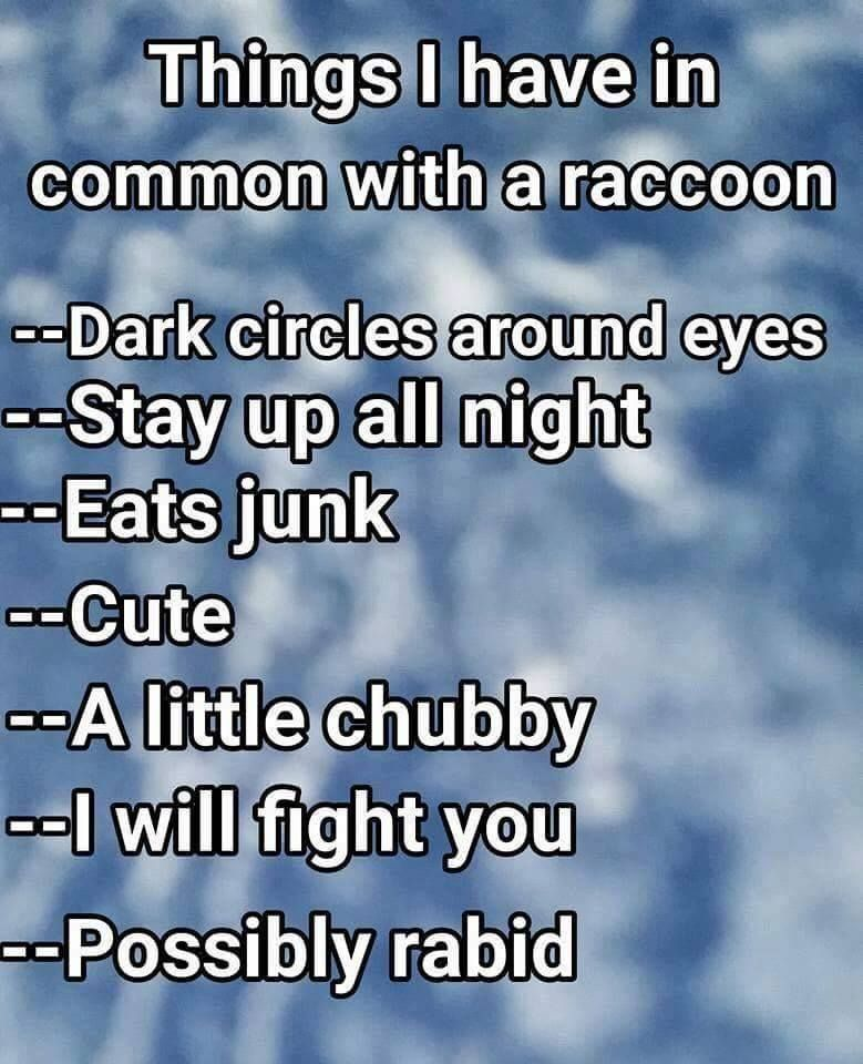 Things I Have In Common With A Raccoon Funny Quotes Dark Circles Around Eyes Twisted Humor