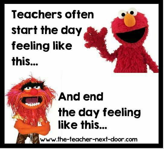 Funny Quotes About School Teachers: I Personally Like Animal Way Better! Lol