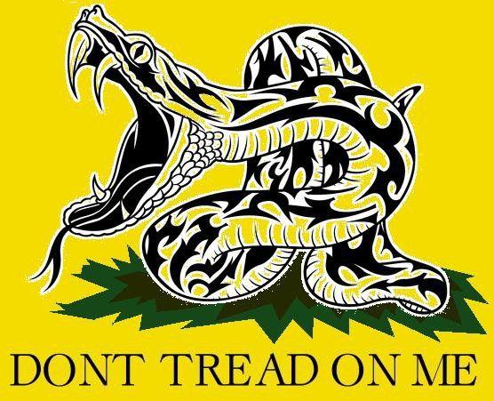 Don T Tread On Me Gadsden Rattlesnake 5 X4 6 Sticker Decal V2