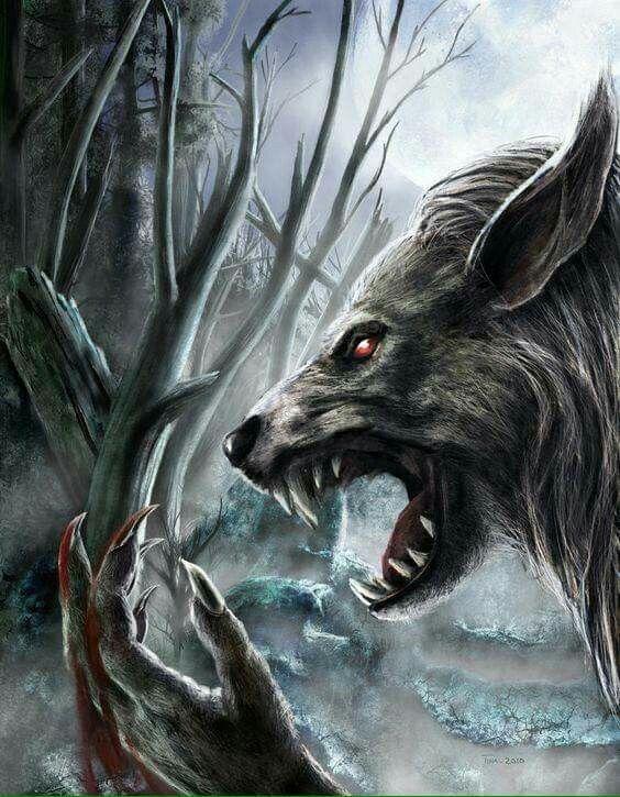 Wolf Monsters : Photo | Werewolf, Werewolf art, Vampires