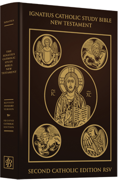 Journey through Scripture | St. Paul Center